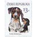 0875 - Štěňata - Český strakatý pes