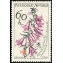 1377 - Zvonek řepkovitý