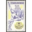 1356 - Krasobruslení