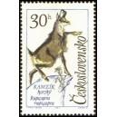 1347 - Kamzík horský