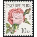0543 - Krása květů - růže