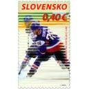 0493 - Hokejisté