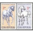 0122-0123 - Kladrubští koně