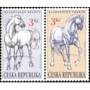 0123-123 - Kladrubští koně