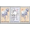 122-123-122 - Kladrubští koně