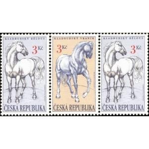 0122-0123 (123+122+123) - Kladrubští koně