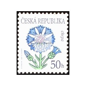 0378 - Krása květů - Chrpa