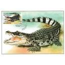 CM139 - ZOO Protivín: krokodýl filipínský