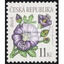 0458 - Krása květů - Ibišek
