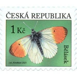 1110 - Bělásek