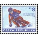 0170 - MS ve skibobech Špindlerův Mlýn 1998